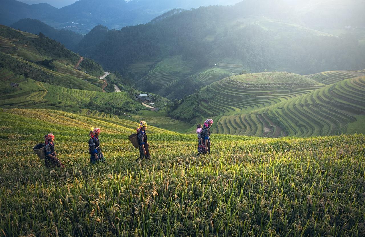 Guide touristique Thaïlande